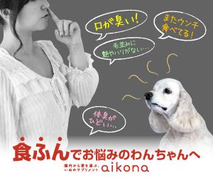 aikona-あいこな