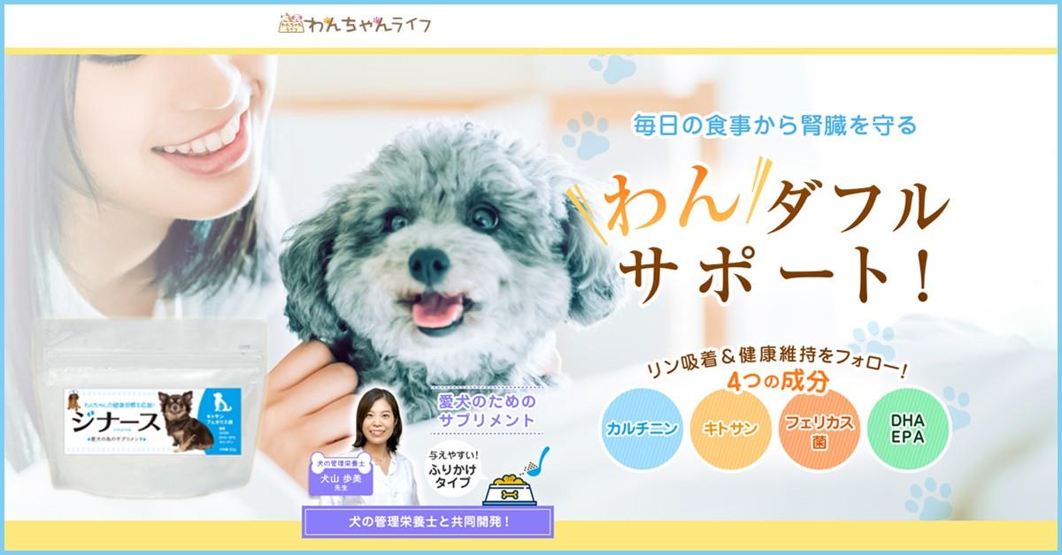 dog-Supplement-care-jina-su
